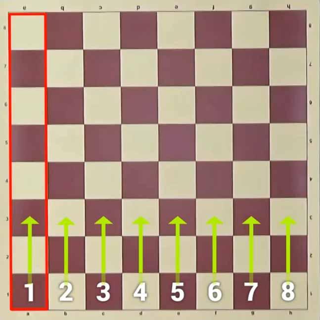 Satranç Tahtası Dikeydeki Kareler