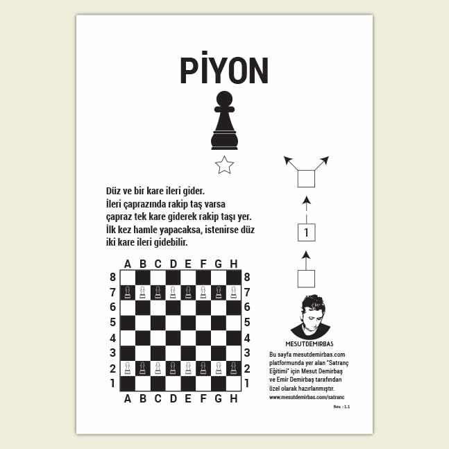 Satranç Taşları Piyon Rehber Kartı