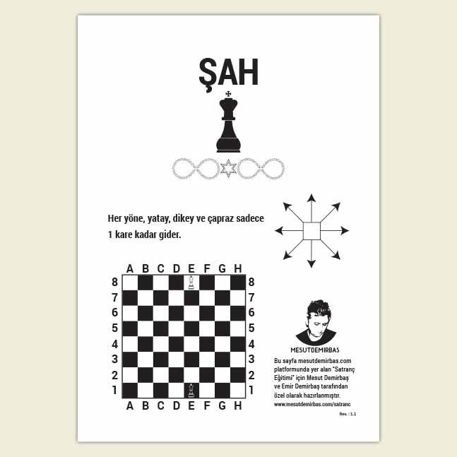 Satranç Taşları Şah Rehber Kartı