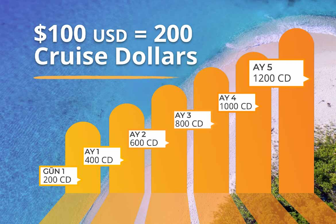 InCruises Cruse Dolar